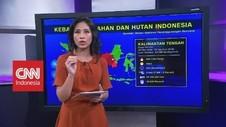 Menilik Peta Persebaran Karhutla di Indonesia