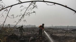 Hutan yang Terbakar di Semeru Mencapai 198 Hektare