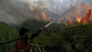 Karhutla akan Terus 'Hantui' Indonesia