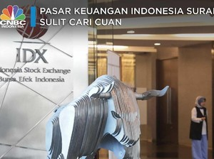 Pasar Keuangan Indonesia Suram, Sulit Cari Cuan
