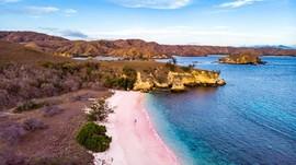 Batal Ditutup, Luhut Sebut Investor AS Lirik Pulau Komodo
