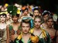 FOTO : Eksotisme Hutan Hijau Dolce & Gabbana