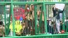 VIDEO: SIswa SMP dan SMA Unjuk Rasa RKUHP  di Kawasan DPR