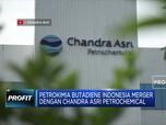 Petrokimia Butadiene akan Merger dengan Chandra Asri