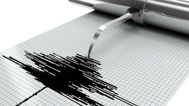 Bali Diguncang Gempa M 5,1, Tak Berpotensi Tsunami