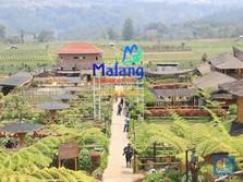 Sulap Lahan Pertanian Jadi Wisata, Desa Ini Raup Rp 8 M/Tahun