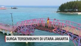 VIDEO: Surga Tersembunyi di Utara Jakarta
