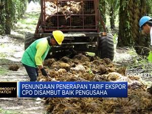Pemerintah Tunda Penerapan Pungutan Ekspor Sawit
