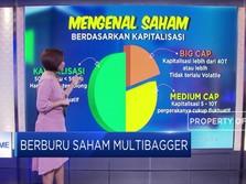 Mengenal Saham Multibagger