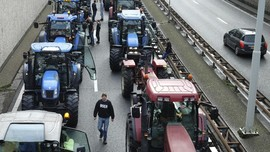 Petani Belanda Demo Bawa Traktor, Lalu Lintas Macet Total