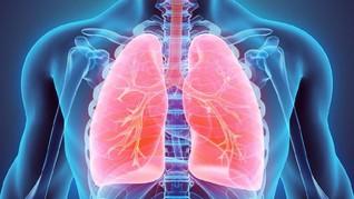 Ahli di RI Buat Obat untuk Halau Corona Menembus Paru-paru