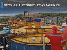 Bidik 180.000 Ton, BRMS Mulai Produksi Emas Tahun Ini
