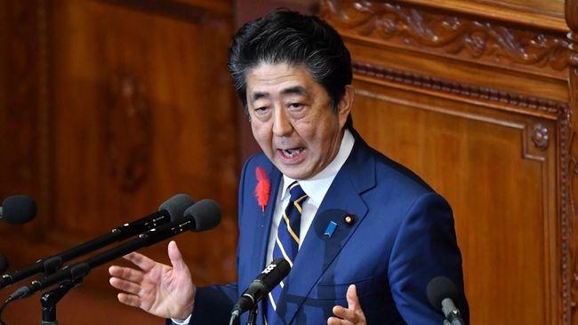 Jet Ditumpangi PM Jepang Sempat Terbakar di Udara