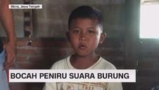 VIDEO: Viral Bocah Peniru Suara Burung