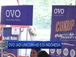 Gojek Berhenti Bakar Uang, OVO Bagaimana?