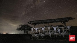 FOTO: Afrika di Timur Jawa