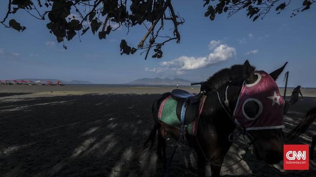 Pengunjung bisa naik kuda untuk keliling sekitar Pantai Boom. (CNN Indonesia/Bisma Septalisma)