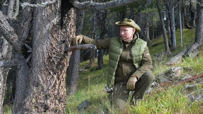 Putin memang dikenal gandrung dengan kegiatan di alam bebas. (Photo by Alexey DRUZHININ / Sputnik / AFP)