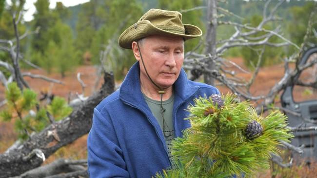Dalam pendakian itu, Putin hanya ditemani oleh sejumlah pengawal dan Menhan Sergei Shoigu. (Photo by Alexey DRUZHININ / Sputnik / AFP)