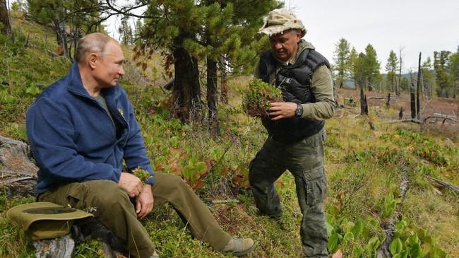 Putin sudah beberapa kali menjelajahi kawasan pegunungan di Tuva, sambil memancing atau berenang di danau dan sungai setempat. (Alexei Druzhinin, Sputnik, Kremlin Pool Photo via AP)