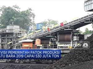 Pemerintah Naikkan Target Produksi Batu Bara, Waduh....