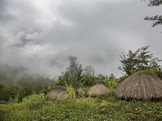 PKS Minta Pengecekan Penumpang Pesawat di Papua Diperketat
