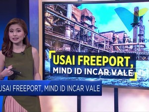 Usai Freeport, MIND ID Incar VALE