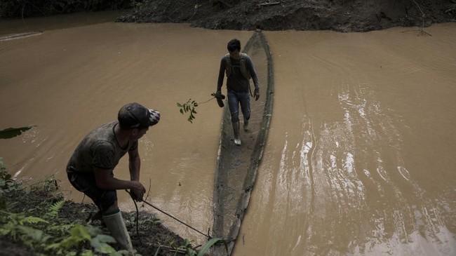 Sukses dengan area hutan di Madre de Dios, sejak 2009 aksi reboisasi juga tengah dilakukan untuk 800 hektare hutan di Monongahela dan 4.500 hektare hutan di Appalachia.(AP Photo/Rodrigo Abd)