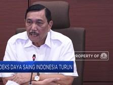 Indeks Daya Saing Indonesia Turun, Apa Penyebabnya ?