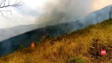 VIDEO: Hutan Gunung Ringgit Ludes Terbakar