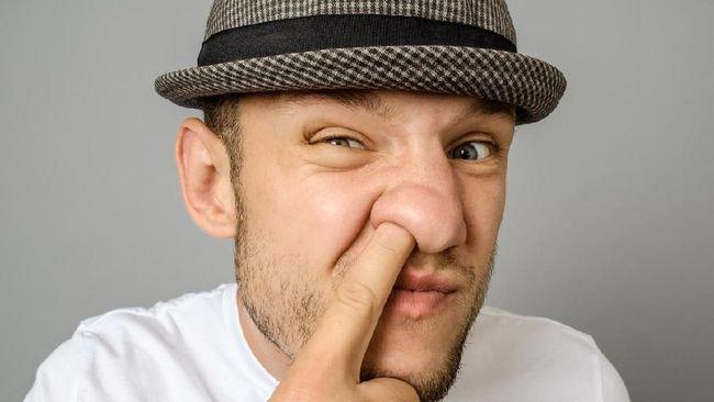 Bukan Menjijikkan, Upil Juga Berfungsi untuk Hidung