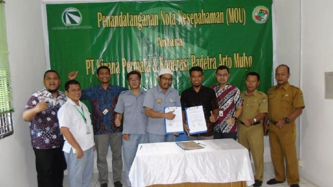 PGAS KMTR Koperasi Binaan PGN Serap Hasil Karet dari Kirana Megatara