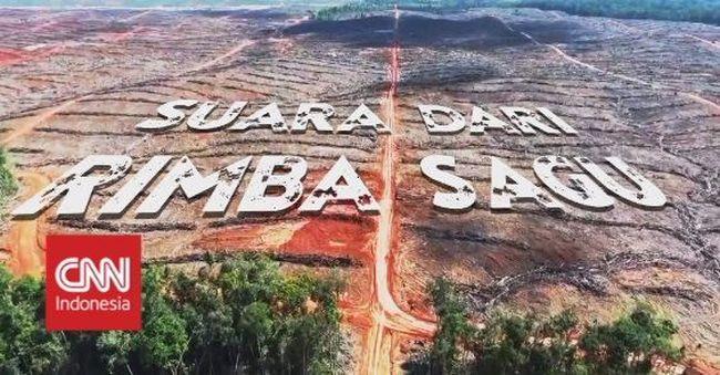 Video Suara Dari Rimba Sagu Papua Belum Bebas Gizi Buruk