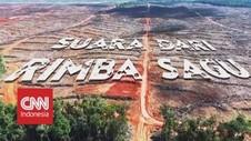 VIDEO: Suara Dari Rimba Sagu, Papua Belum Bebas Gizi Buruk