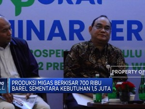 SKK Migas Sebut Indonesia Sulit Keluar dari Impor Migas