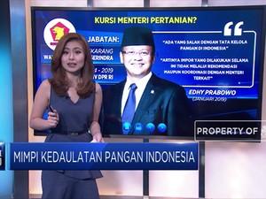 Mimpi Kedaulatan Pangan Indonesia