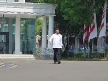 Menteri Syahrul Mau Musnahkan Mafia Pangan, Mungkinkah?