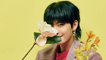 Hwall Keluar dari The Boyz, Fan Ramaikan #ThankYouHwall
