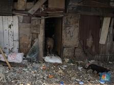 Mantap! Tak Cuma Kemiskinan, Angka Ketimpangan Juga Turun