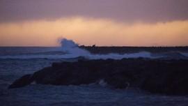Kontes Surfing Terlalu Sering, Warga Hawaii Mengeluh