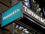 Sah! Louis Vuitton Akuisisi Tiffany & Co Senilai Rp 226 T