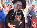 VIDEO: Ratusan Anjing di Boston Ikut 'Rayakan' Halloween