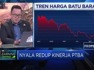 Menakar Kinerja PTBA di Tengah Peningkatan Beban Pendapatan