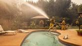 Penduduk di wilayah Brentwood, Los Angeles, harus mengungsi menghindari kebakaran hutan. (AP Photo/Ethan Swope)