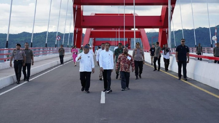 Usai Dikunjungi Jokowi, 'Provinsi Papua Selatan' Muncul