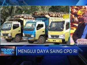 GAPKI Ungkap Tantangan Pasar Ekspor CPO Indonesia