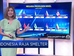 Indonesia Raja Smelter