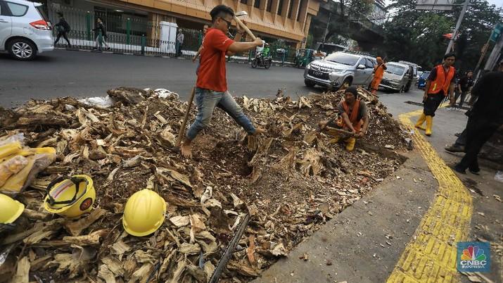 Intip Pemandangan Pohon-pohon Tua yang Ditebang di Cikini