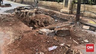 Penebangan Pohon Angsana dan Keteduhan yang Hilang di Cikini