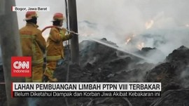 VIDEO: Lahan Pembuangan Limbah PTPN VIII Terbakar